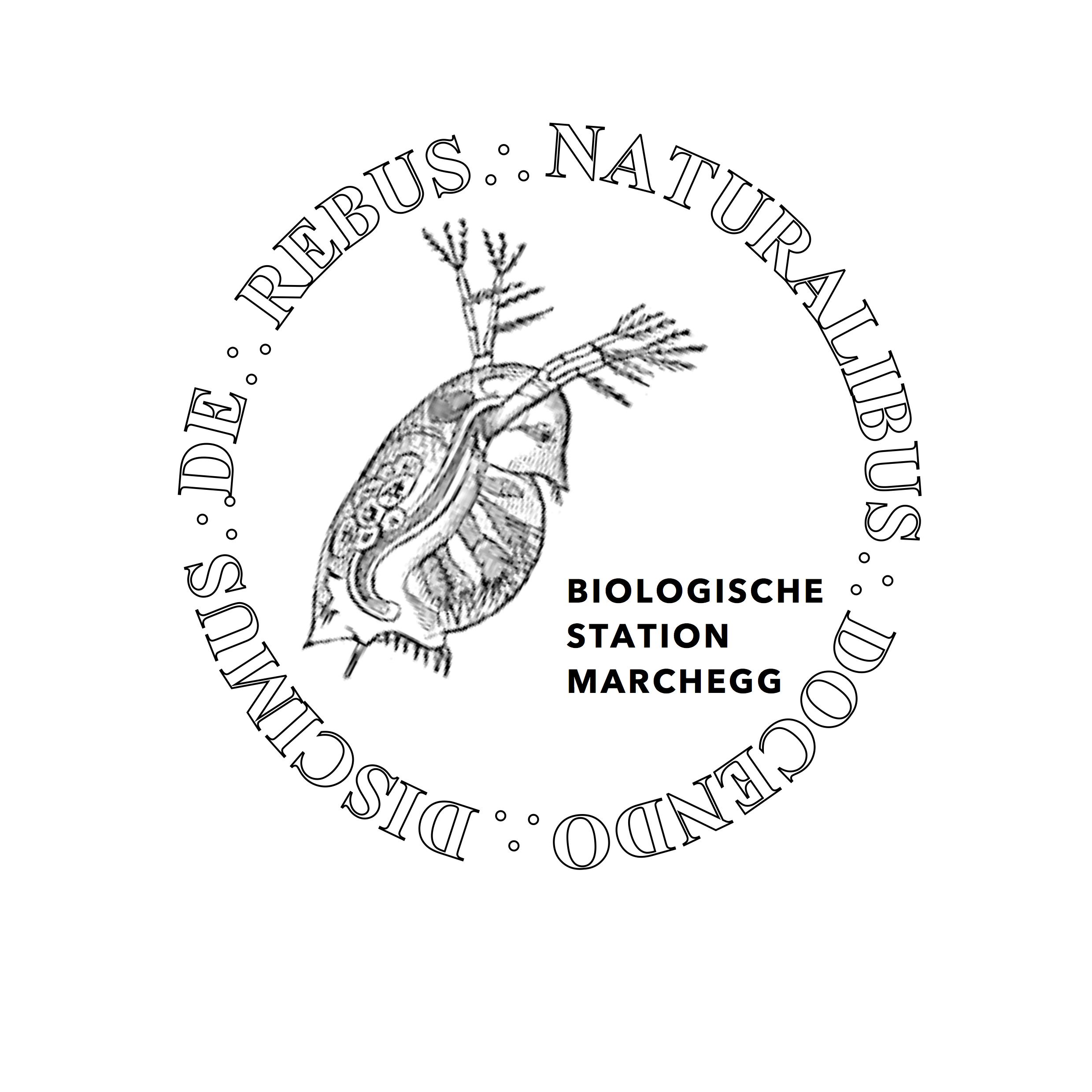 Logo Biologische Station Marchegg