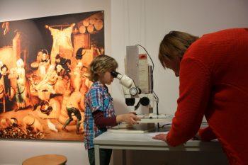 Wirkungswechsel Stadtmuseum Wr. Neustadt 2015