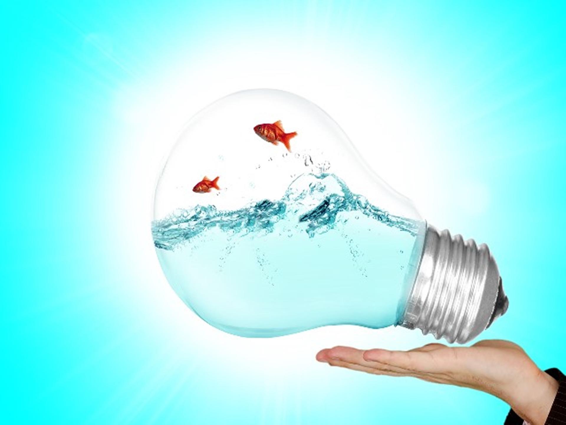 lamp-2247538_1920_Mari Ana_Pixabay